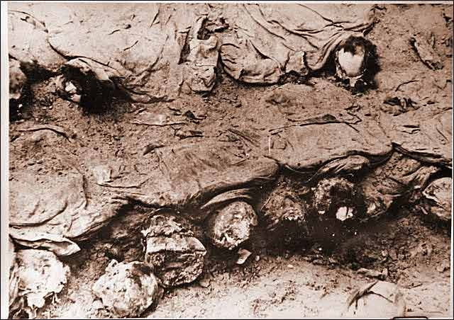 katyn masscare and katyn film Katyn affair was just perfect for that purpose the polish government-in-exile that was led by sikorski, bought the german version almost immediately, before they after the wwii the katyn affair had been a political weapon used by western democracies in their war againt the evil soviet empire (for.